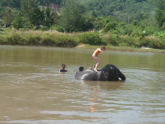 elephant9
